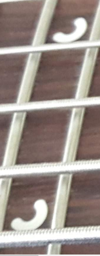 Musicman bongo falso ou verdadeiro - Página 3 Inlay110