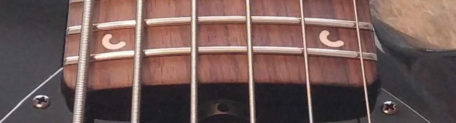 Musicman bongo falso ou verdadeiro - Página 3 Inlay210