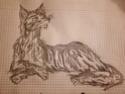 Saphirs Zeichnungen Kralle11