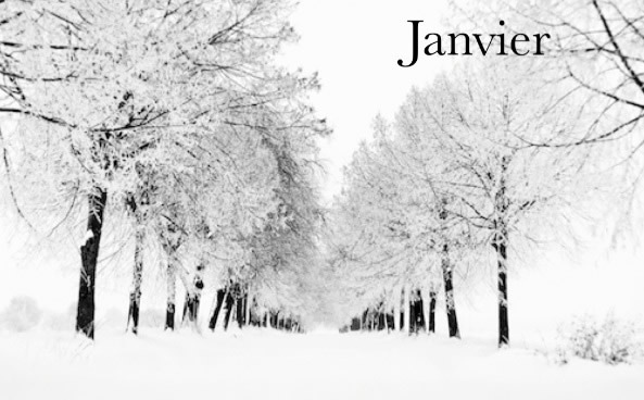 Carnet De Lecture De Flojana Janvie11