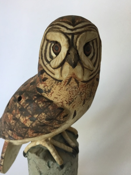 Painted owl on perch - Neil Ions  8123f010