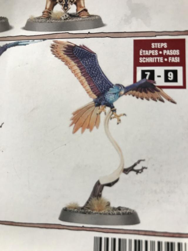 Je ne trouve pas d'idée sur les couleurs de ce Aetherwings Img_0310
