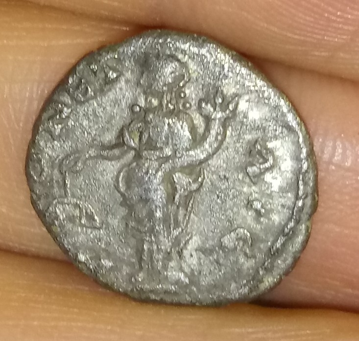 Denario de Septimio Severo. MONET AVG. Laodicea ad Mare 20200410