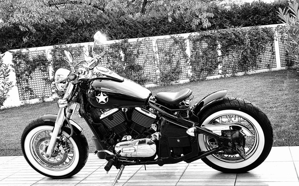800 VN - Mon Bobber 20201012