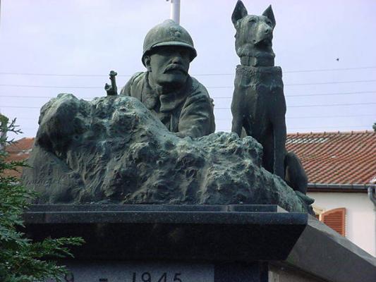 Le chien, compagnon du combattant Dscpag11
