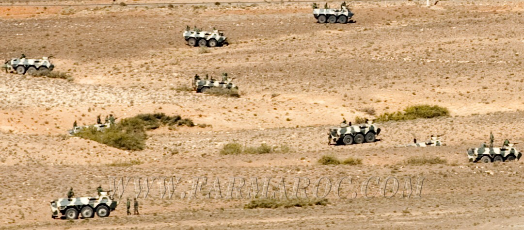Photos - Véhicules blindées / Armored Vehicles, APC and IFV - Page 2 Ct7u_w10