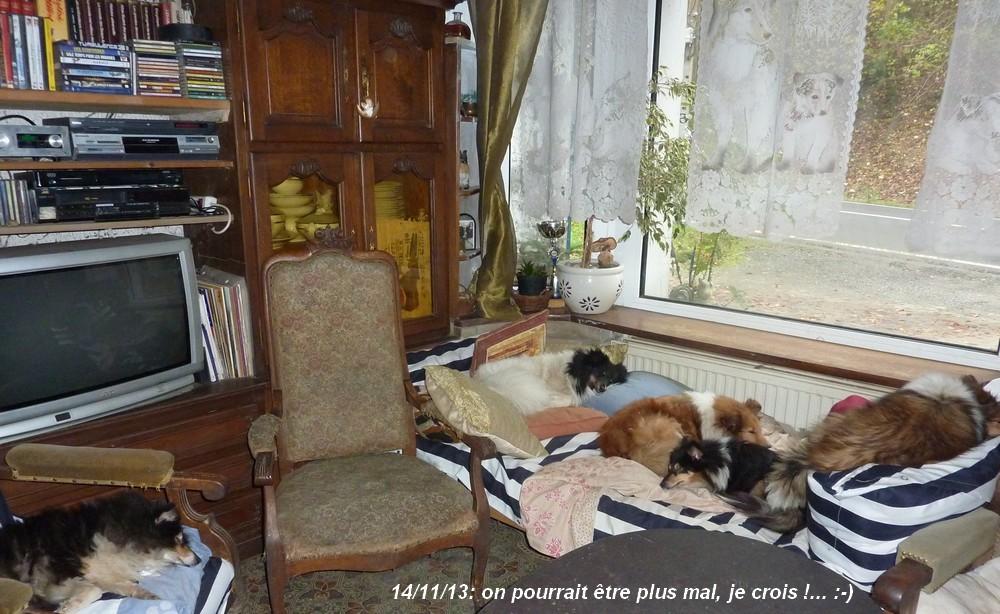 farniente: 14/11/13: Shets_51