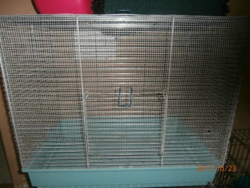 Cage, étages, et enclos Pa232410