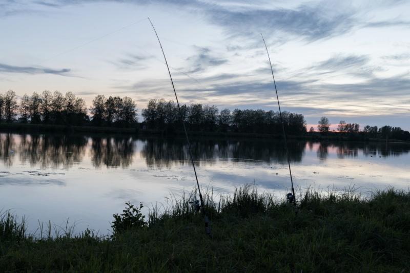 Entre Saône et Seille Photo217