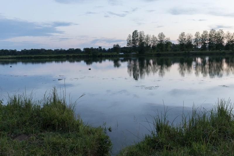 Entre Saône et Seille Photo218