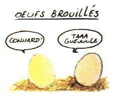 histoire d'œufs   Images10