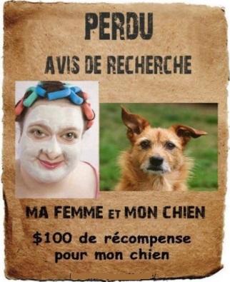 AVIS DE RECHERCHE Recher10