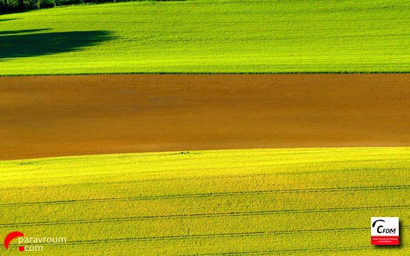 4618 - 31/05/19 - Marc WEYER - 56 km - homologué Imag1000