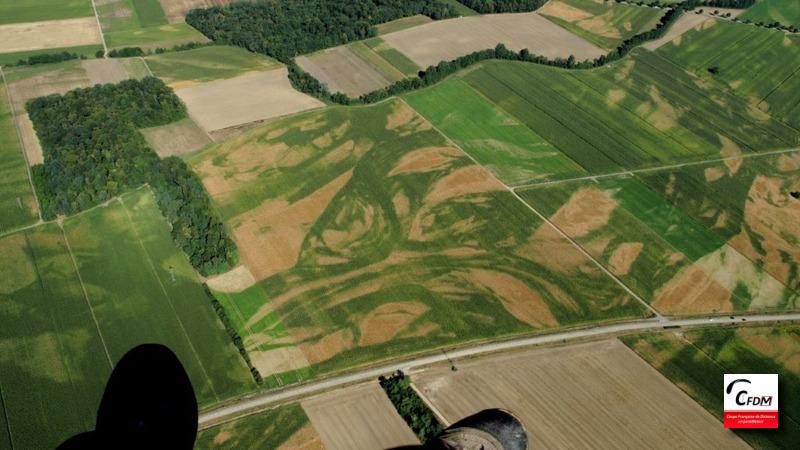 3120 - 12/08/18 -  Guy LOEHLE - 108 km - homologué Image183