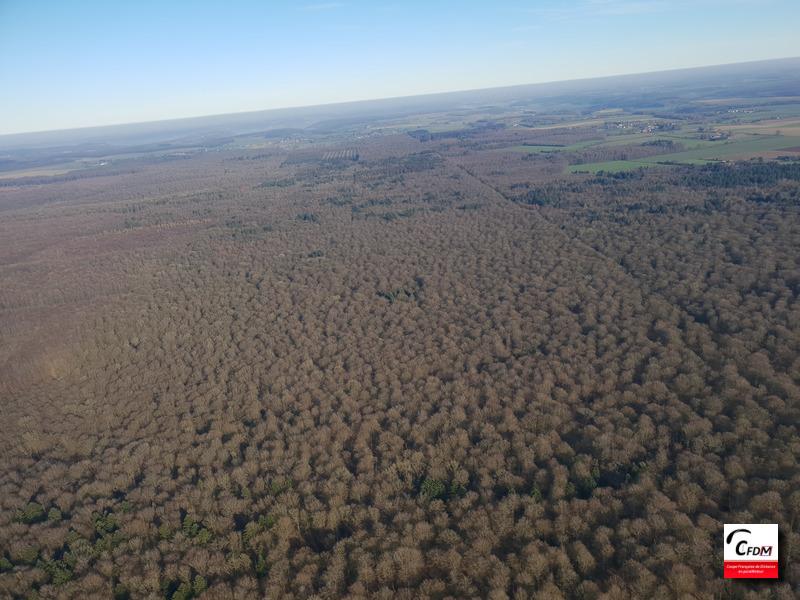 3927 - 14/02/19 - Vincent LOISEL - 146 km - homologué Image665