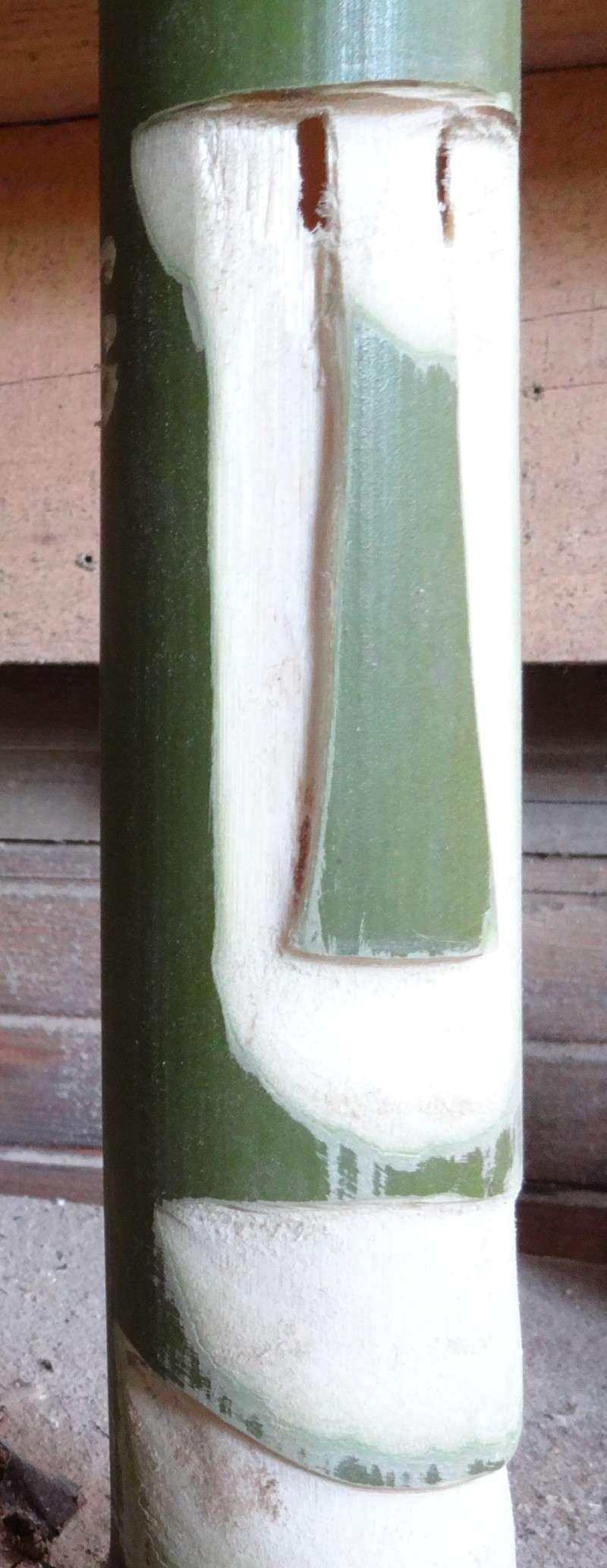 Tiki and Tiki carver - Page 6 Bambou10
