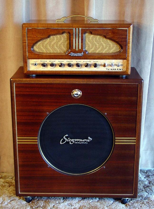 Very cool amp guitar............ E15a2110