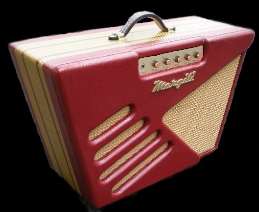 Very cool amp guitar............ - Page 3 Elroy110