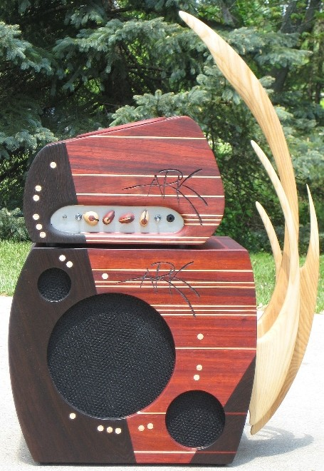 Very cool amp guitar............ Model_10