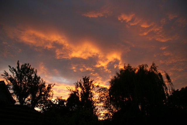 37 - Les nuages - Page 2 Dsc03610