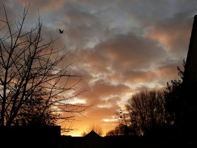 37 - Les nuages..... photos reçues  - Page 3 P1000616