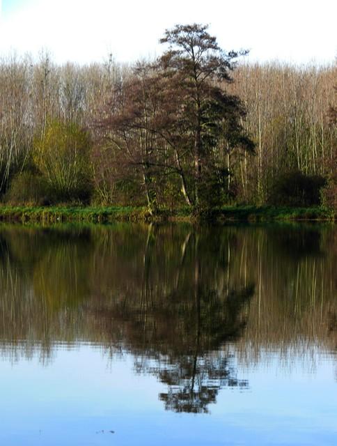 36 - Les reflets dans les flaques d'eau........ photos reçues !!! - Page 4 P1290216