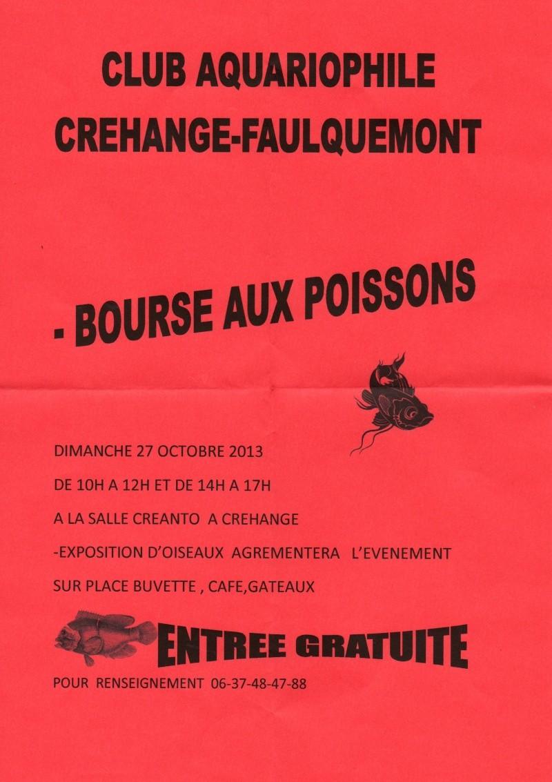 Bourse à Crehange - 27 octobre 2013 Img06510