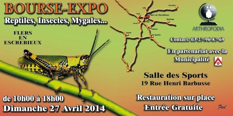 Flers-en-Escrebieux 27 avril 2014  Bandea10