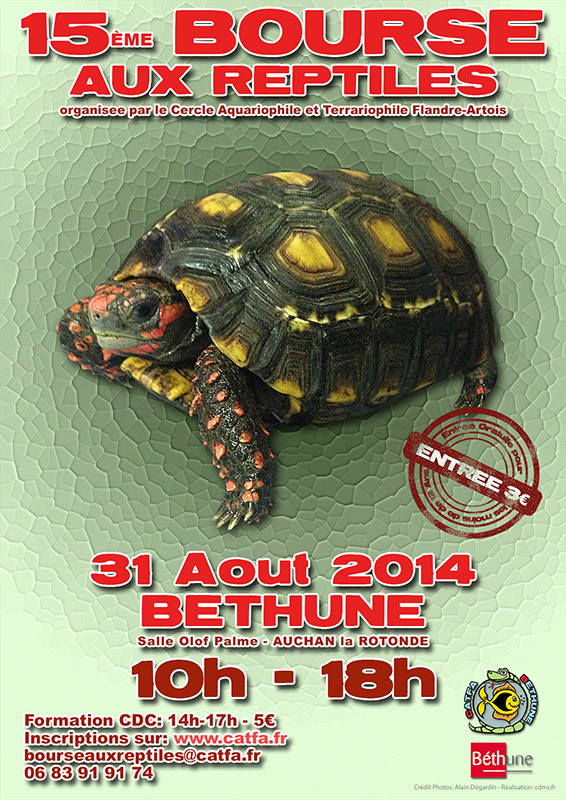 bethune 31 Aout 2014 Br1510