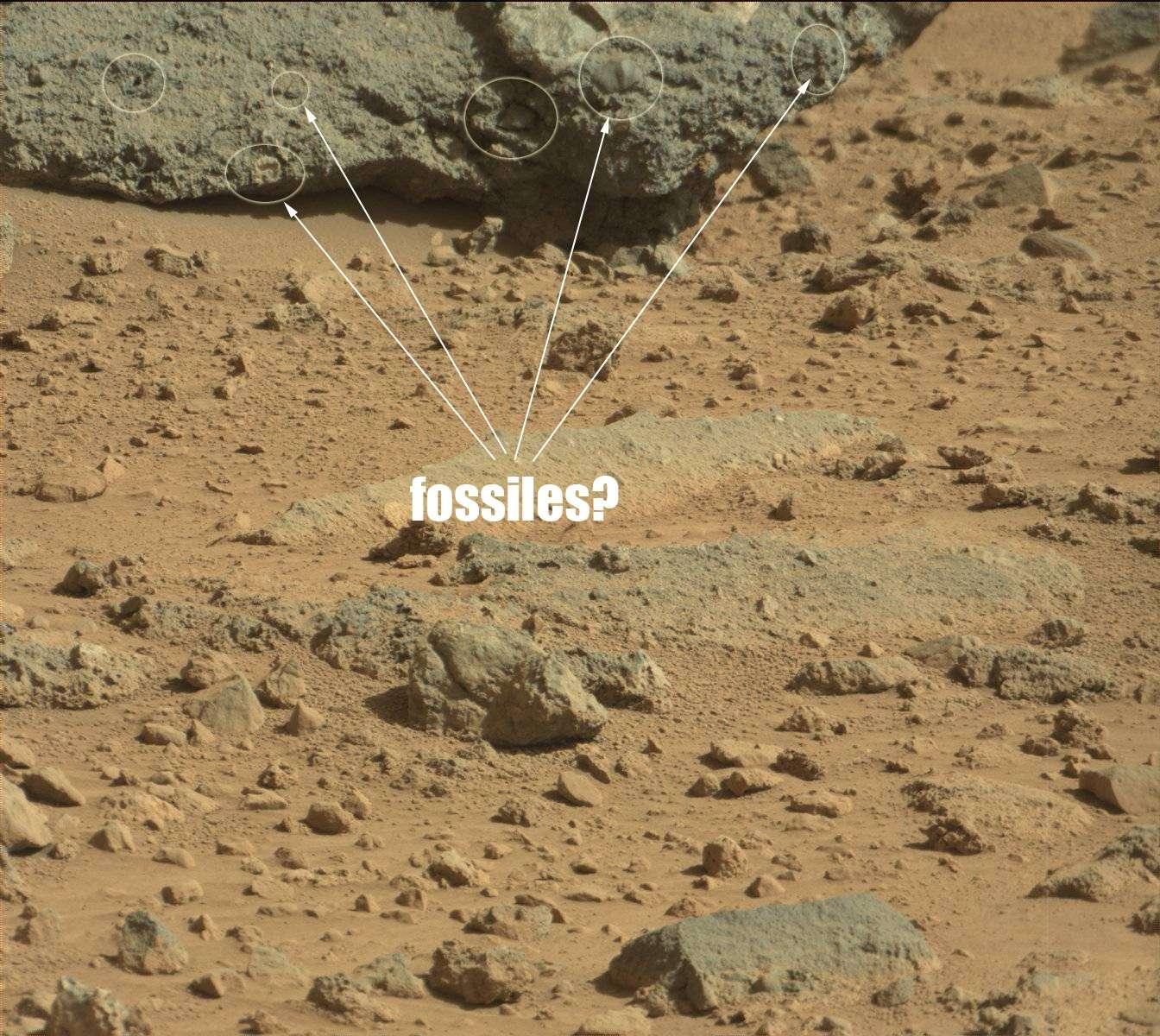 Des fossiles sur mars Asis10