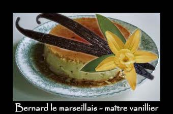 Culture de la Vanille ? Vanill10