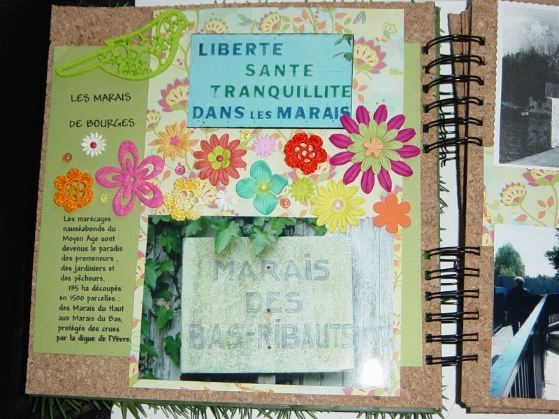 avis bind it all - Page 2 Dsc04912