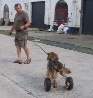 Nouveau chariot pour TCHARA (9 août 2008) Chario12