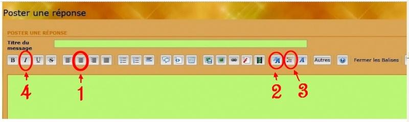 Hébergement d'images - Rédaction d'un texte Copie_14