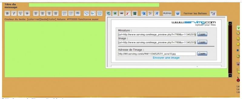 Hébergement d'images - Rédaction d'un texte Image_15
