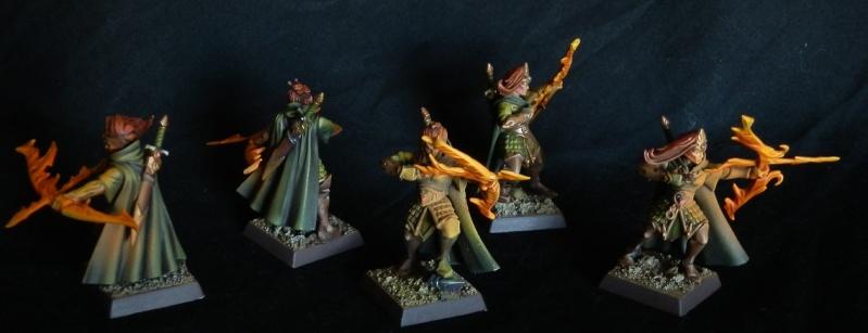 [Choix des armes 2013] Hauts-Elfes d'Aio P3090010