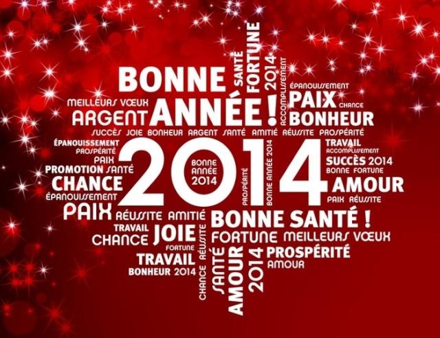 Mes meilleurs voeux pour l'année 2014 Bonnaa10
