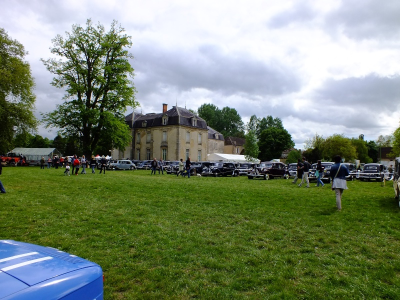 Superbe Expo au Chateaux de Vignoles dans le 21 ! Dscf3456