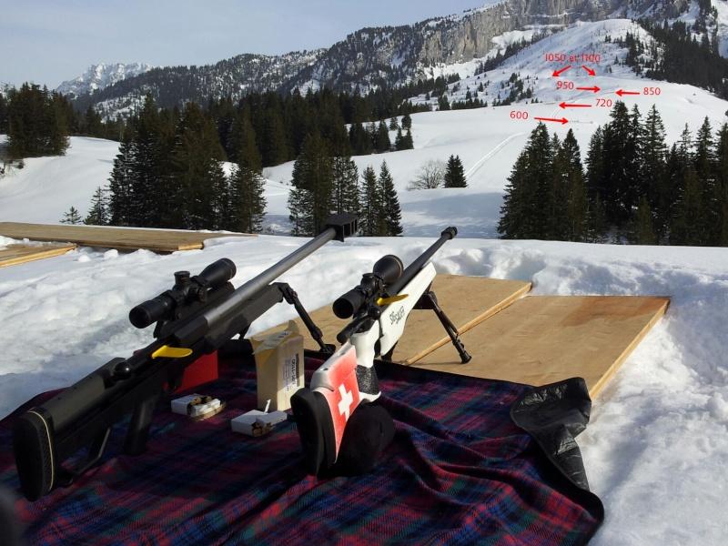 TLD gros calibre / 7.5mm à 850m et .50bmg à 1050m Picsar12