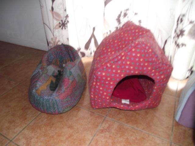 Paniers en osier, dodos chien chat de toute taille Dscf3713