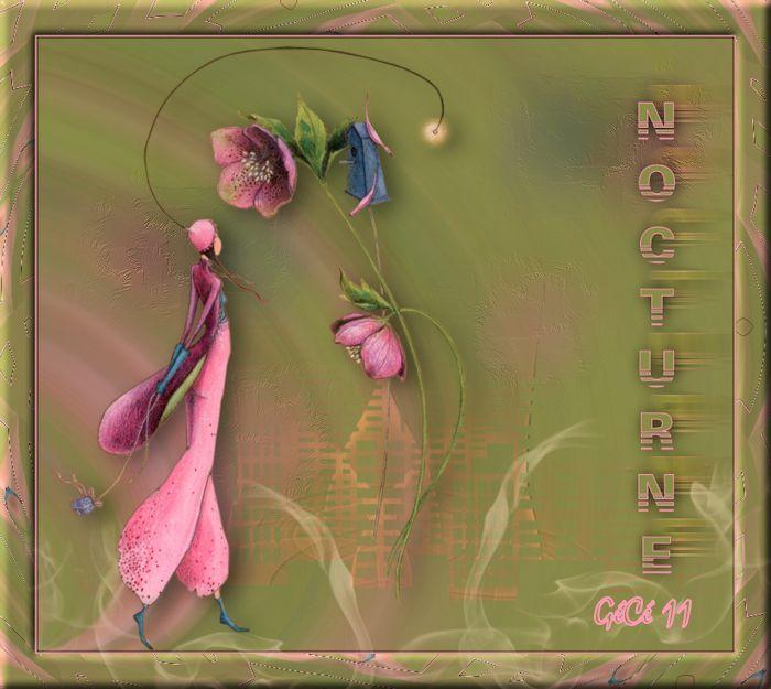 10-Cours Psp-Nocturne Noctur10