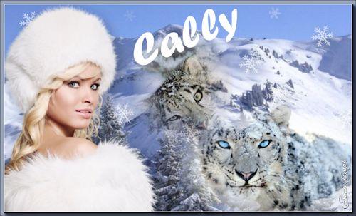 Forum de zmeia (AnnieGraph) Cally110