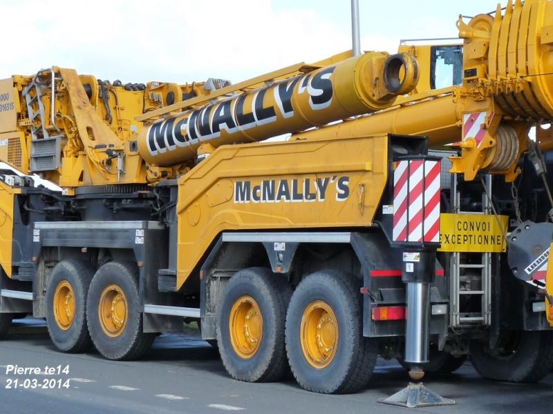 Les grues de Mc NALLY's (Irelande) - Page 3 2014-039
