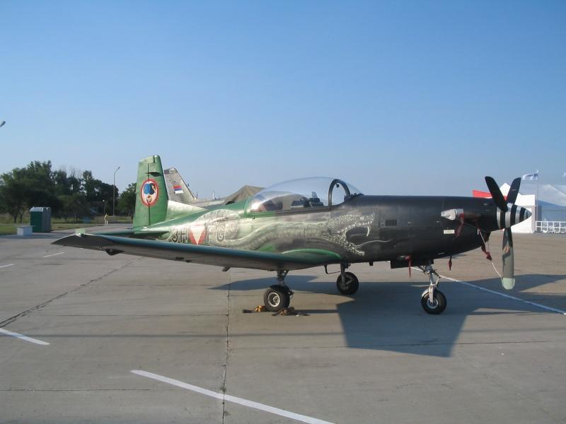 Avioane Straine in Culori Speciale Img_0010