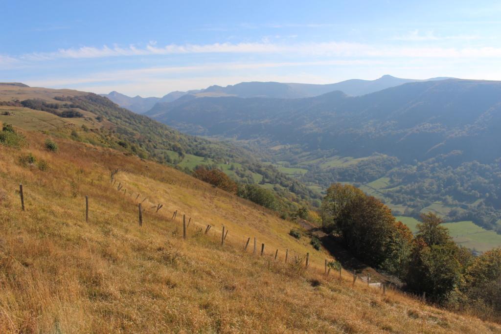 A quelques pas du Col d'Aulac... - Page 2 Img_9911