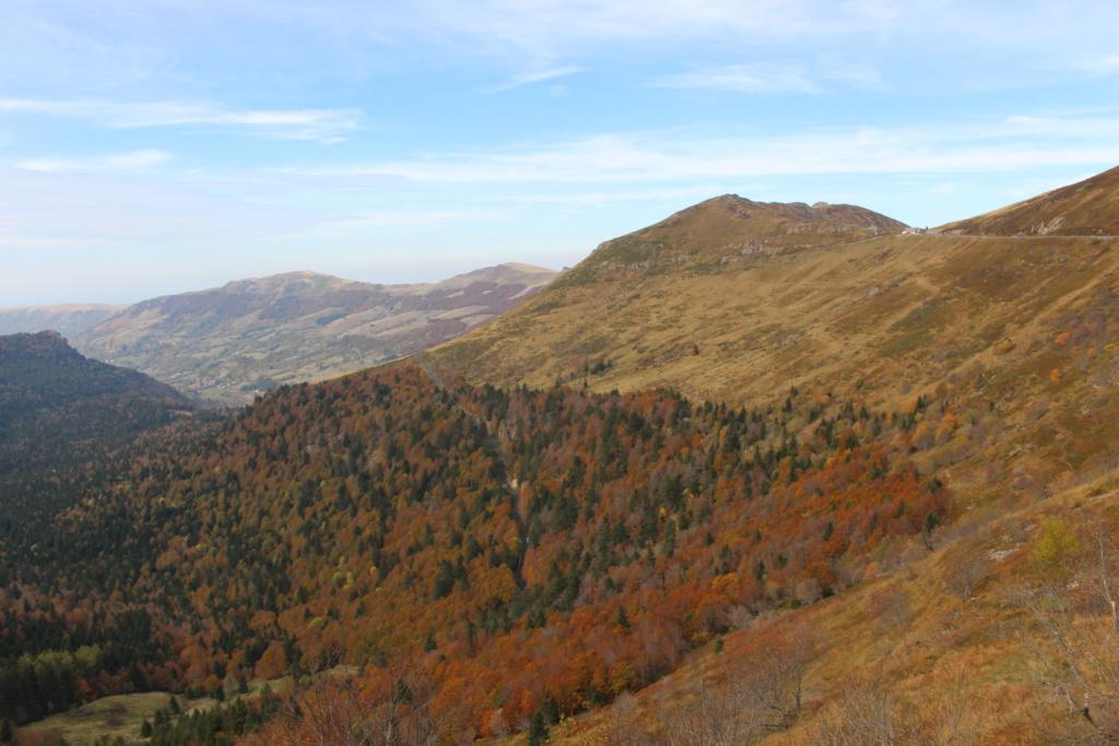 L'automne sur le massif cantalien Img_9913