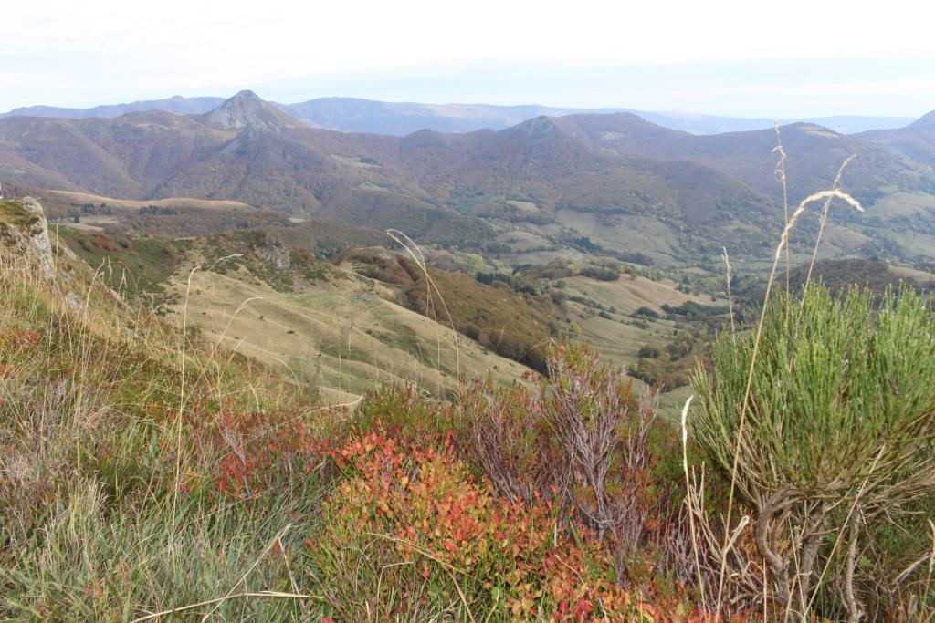 L'automne sur le massif cantalien Img_9920