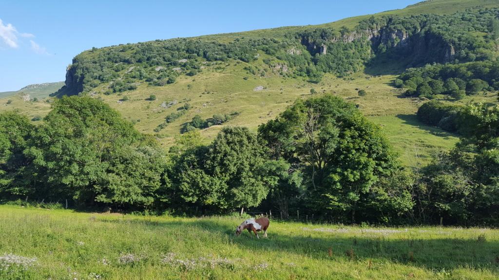Balade en vallée de l'Impradine (Lavigerie) Vallee12
