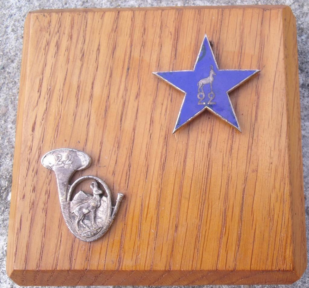 souvenirs nominatif du 22ème BCA SES  Dscf7615