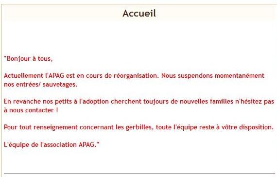 3 gerbilles (plus le temps) Apag10